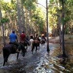 passeio a cavalo em Florianópolis
