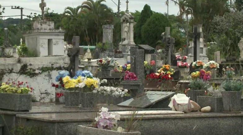 lei autoriza sepultamento de animais domésticos em florianópolis