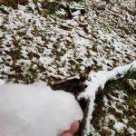 Neve em Santa Catarina 2018