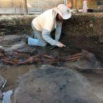 Homem pré histórico em Florinaópolis