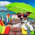 dicas de férias em Santa Catarina